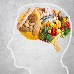 Die Zuckersucht des Gehirns