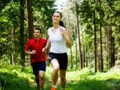 jogging-wald