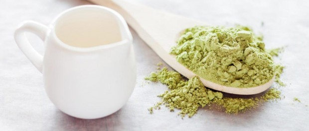 Matcha Tee - Pulver